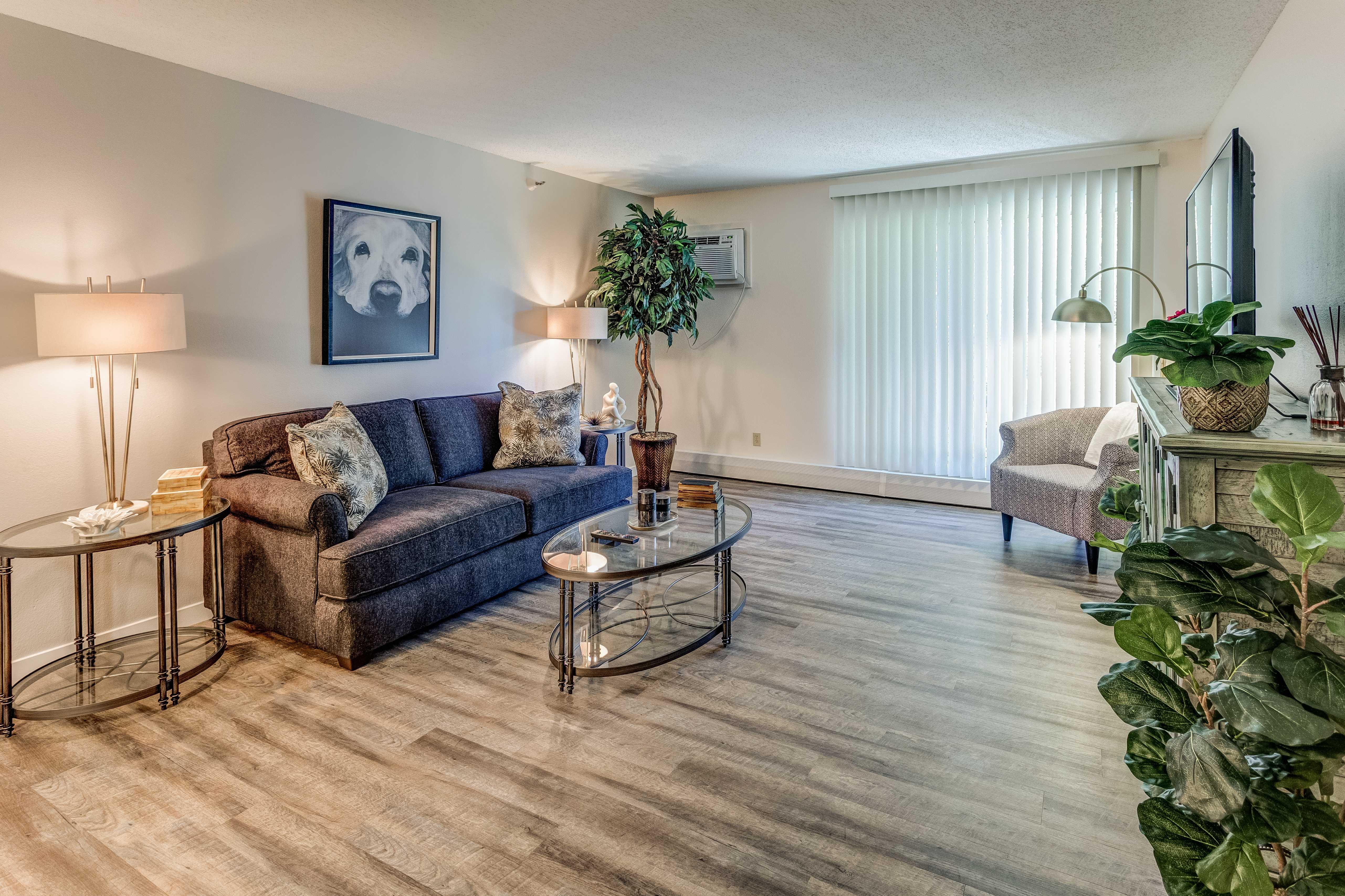 Carriage Oaks living room.